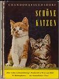 Sch?ne Katzen : Was sie f?r uns bedeuten, wie sie leben, und wie man sie hegt und pflegt.