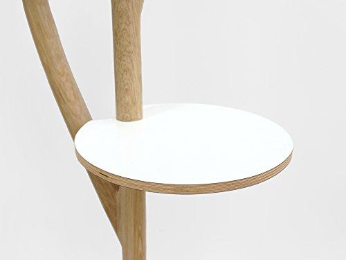 Ast Regal - Niederländisch - Entwurf - Handmade - Wohnen - Haus - Holz – Lorier – Dutch - Design (Haus-entwurf)