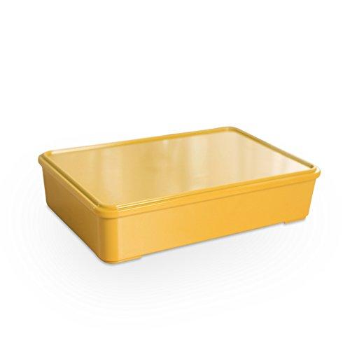 Melamina spuntino casella categoria/ i quattro-contenitore con coperchio/ frutta secca/ frutta-box-D