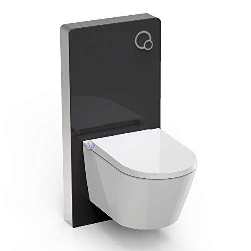 WC-Sparpaket 7: Dusch-WC Basic 1102 & Sanitärmodul 805 in Schwarz