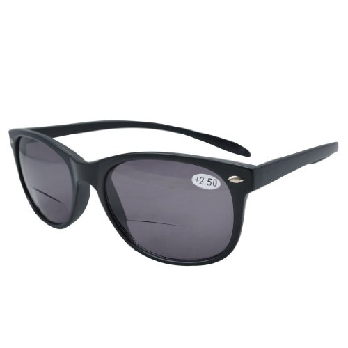 Eyekepper Lange Arme Bifocal Sonnenbrillen Grau Linse +1.00 (Lesebrille Sun-leser Männer)