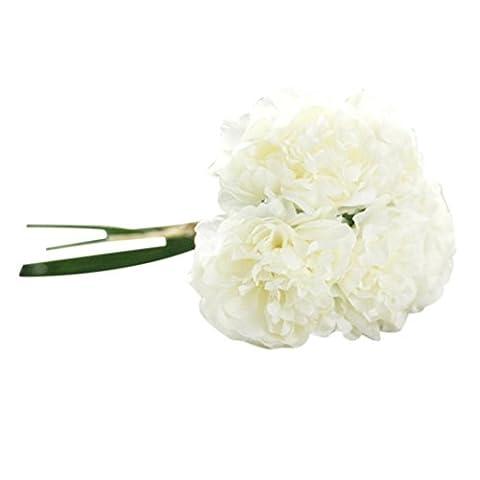 OverDose Kunstseide Fake Flowers Peony Floral Wedding Bouquet Braut Hydrangea Dekor Artificial Silk Fake Flowers Peony Floral Wedding Bouquet Bridal Hydrangea Decor (F, 1*Bündel(5 PCS Blume))
