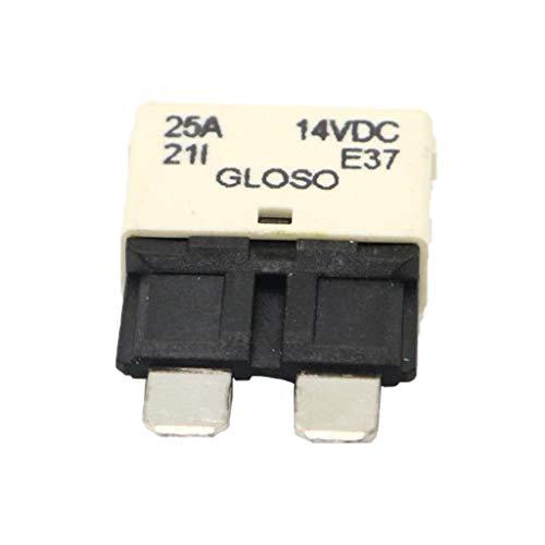 Homyl Assortiment de Voiture Mini Fusible Lame Disjoncteur Étanche - Blanc 25A