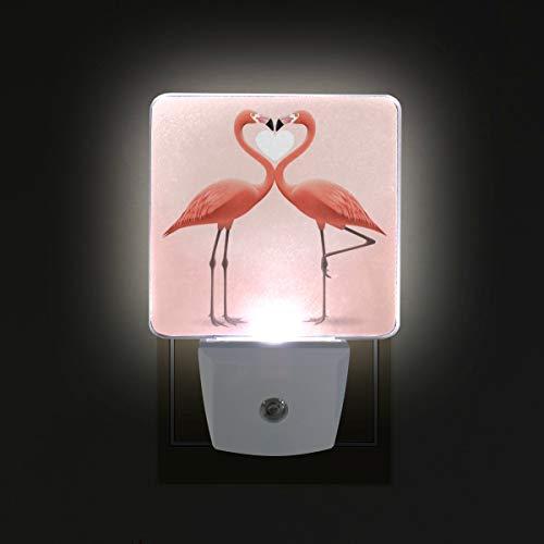 Ahomy - luce notturna a led, per san valentino, a forma di cuore con fenicotteri rosa, sensore automatico, dal tramonto all'alba, plug in - confezione da 2