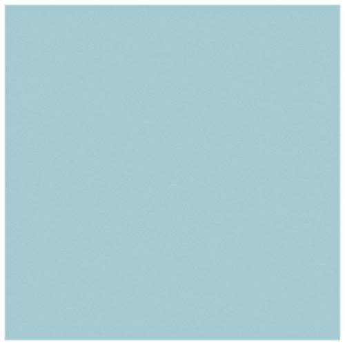 RAYYAN LINEN Bettwäschegarnitur Perkal unifarben Poly Baumwolle Duck Egg Bettwäsche Set Größe Doppel | Bettbezug Bettwäsche Set mit Paar Kissenbezüge (Enten Bettwäsche-sets)