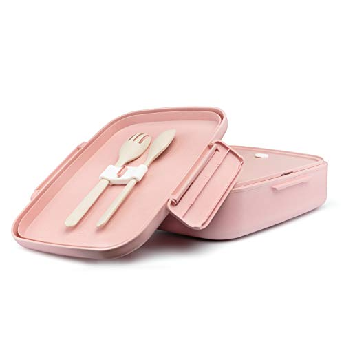 Ecolina Nachhaltige Lunchbox ♻ Biologisch abbaubare Bento Box mit 5 praktischen Unterteilungen. Umweltfreundlich auslaufsichere Brotdose, BPA-frei und plastikfrei (Rosa)