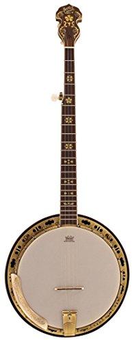 """Barnes Mullins BJ500M-Banjo & a 5 corde, in acero e """"di risonanza"""