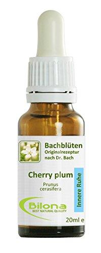 Joy Bachblüten, Essenz Nr. 6: Cherry Plum; 20ml Stockbottle