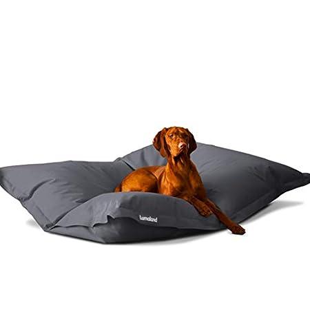 Hundekissen aus leicht abwaschbaren Material für große & kleine Hunde | Hundesofa Hundebett Schlafplatz Ruheplatz…