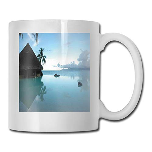 Jolly2T Funny Ceramic Novelty Coffee Mug 11oz,Rock Pool Part of The Sea Mystical Relaxing Serene Nature with Old Wooden House Scenery,Unisex Who Tea Mugs Coffee Cups,Suitable for Office and Home Bee House-infuser