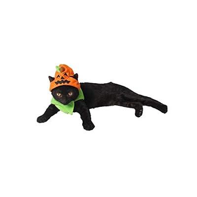 tJexePYK Wall Of Dragon Hot Halloween Pet Supplies Factory Spooky Halloween Dog Hat Cat Ornaments Trick Or Pumpkin Hat 1PC Pet Supplies from tJexePYK