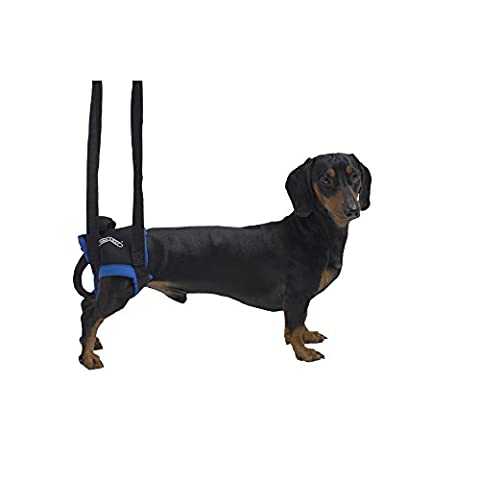 Kruuse Rehab Walkabout Hind Leg Dog Lifting Harness (Medium/Large) (Black)