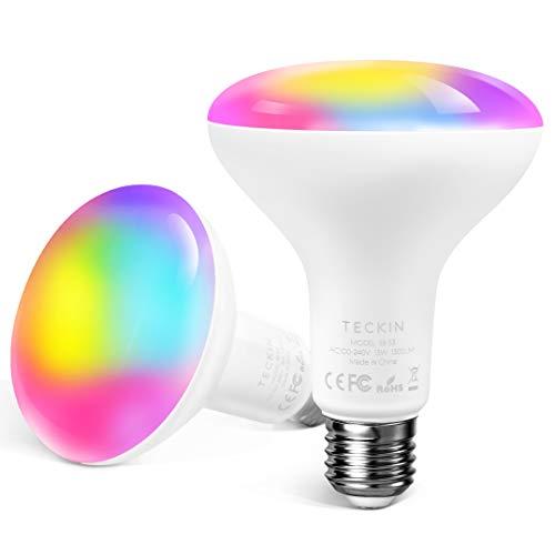 Lampadine Alexa Lampadina Smart Led E27,Dimmerabile Multicolor RGBCW Equivalente 100W,TECKIN Compatibile con Alexa e Google Home,WIFI Intelligente Control 13W BR30 Lampadina con timing,2 Pack