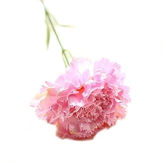 5Barajas de Flores Decorativas de Clavel Artificial de plástico para la casa de Bodas arredamento FAI Da Te Rosa