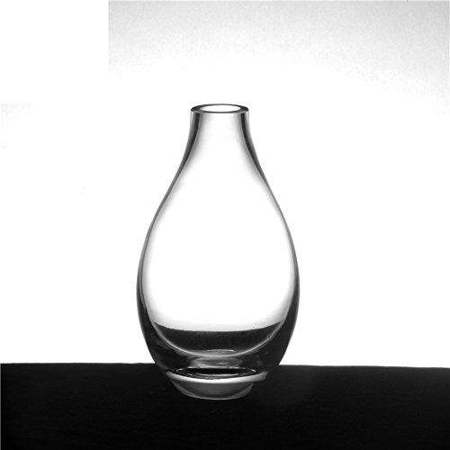 vaso-di-vetro-creativo-il-salotto-di-famiglia-fiori-ornamenti-a