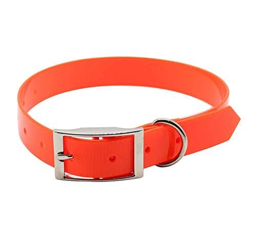 FilANimal -Collar De Mascota para Perros