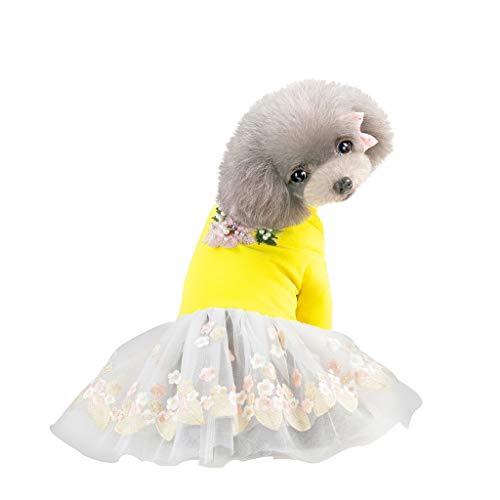 (Hawkimin Haustier Hund Kleider, Sommer Einfach Bestickte Spitze Perlenrock Vorzüglicher Rock Oberkörper Einfarbig Welpen Hunde Kostüm Haustierzubehör)