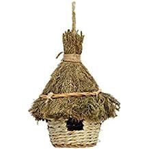 Amazonit La Casetta Degli Uccellini