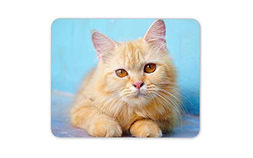 Entzückende Ginger Tom gelbe Augen Mauspad Pad - Katzen-Liebhaber PC Spaß-Geschenk # 16880 - Ginger Tom