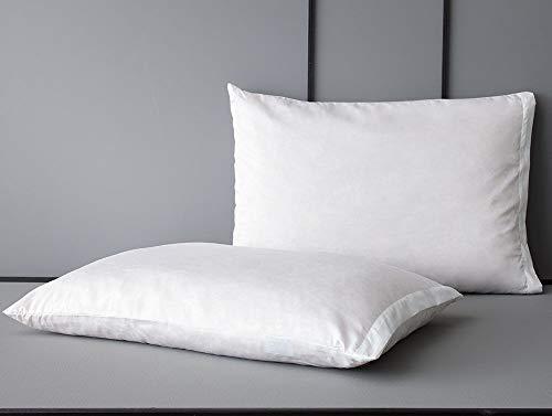 JDX Hollow Fiber Pillow Set of 2-41x60