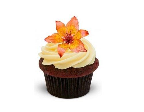 (BLUMEN LILLE mit einer Pfirsich Farbe - 12 essbare hochwertige stehende Kuchen Toppers - PEACH LILY Flower)