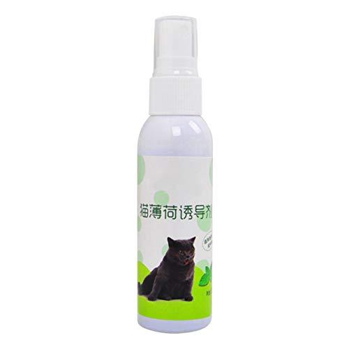 50 ML Katze Mint Pet Training Spielzeug, Natürliche Gesunde Organische Katzenminze Scratcher Spray Menthol Geschmack Katzen Leckereien Lustiges Spielzeug