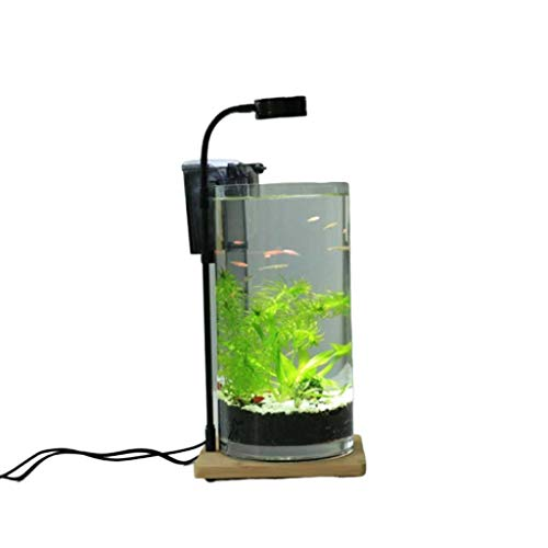 Hjd Aquarien Rund Feng Shui Desktop-Aquarium Miniglas Tropical Fish Tank, Desktop-Ornamente Aquarien (Color : B)