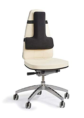 DYHQQ Thoracic Lordosenstütze - Weiches Sitzkissen für Autositze, Schreibtischstühle, Flugzeuge, Stadien und Theater mit umfassender Sitzunterstützung -