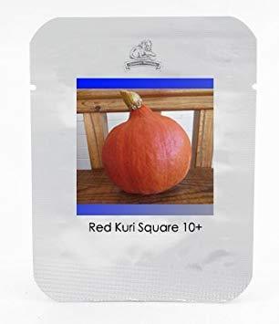 Rare Erbstück Red Kuri Teardrop-Shaped Squash Bio-Samen, Profi-Pack 10 Samen/Pack, süßen Geschmack Glatte Pumpkins