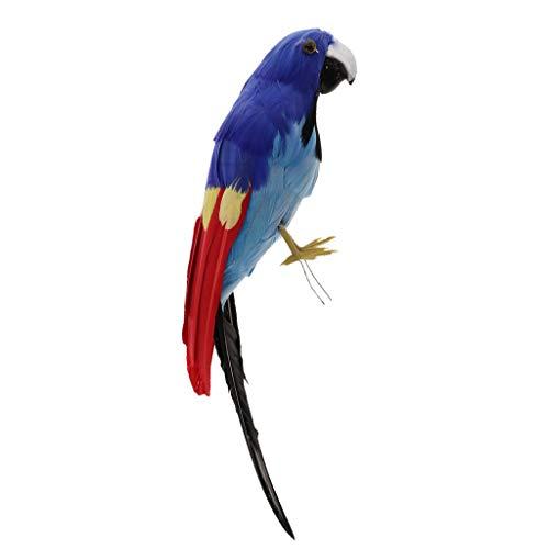 B Blesiya 30 cm Realistische Papagei Vogel Papageien Dekovögel aus Künstliche gefiederten Tierfigur Spielzeug Gartendekoration - H
