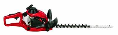 Einhell Benzin Heckenschere GE-PH 2555 A (0,85 kW, 1,2 PS, 550 mm Schnittlänge, 28 mm Zahnabstand, inkl. Auto Choke und Primer, drehbarer Handgriff)