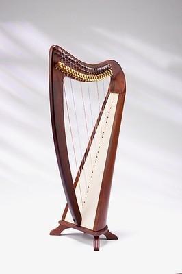 EMS-harpe-celtique-dos-rond-22-cordes-avec-demi-ton-palissandre-massif