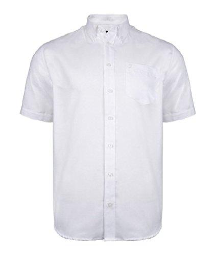 Farah Herren Drayton Shorts ärmlig Oxfordhemd (Drayton) größen 2XL bis 5XL Weiß
