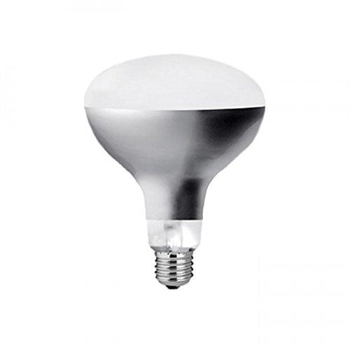 Eco Glühbirne Lampe Parentesi für Halo Laes