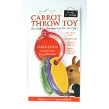 Carrot Throw Rabbit Toy by Pets Incorporated