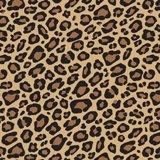 Suttons wrap Printed Patterned Tissue Wrapping Paper luxury 5 sheets