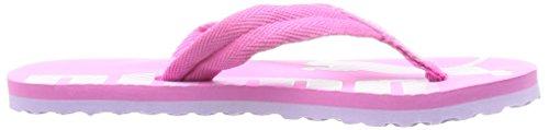 Puma Epic Flip V2 Jr Unisex-Kinder Zehentrenner Pink (phlox pink-orchid bloom 04)