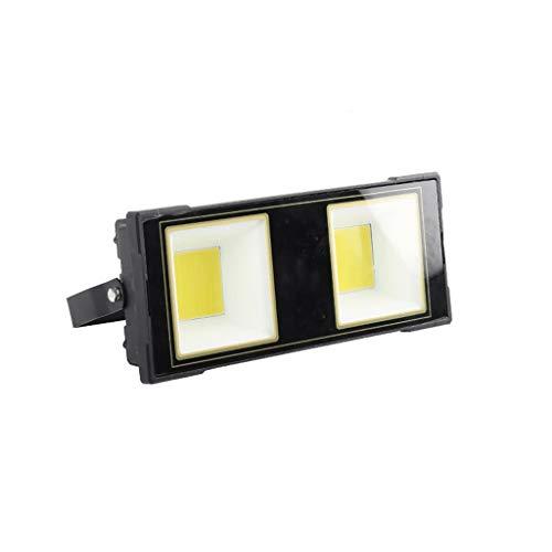 LED-Flutlicht,Industrielle Wasserdichte LED-Projektionslampe Für Den Außenbereich, Offene Tür Mit Beleuchtung, Explosionsgeschützte Lampe (Color : White light-100W) -