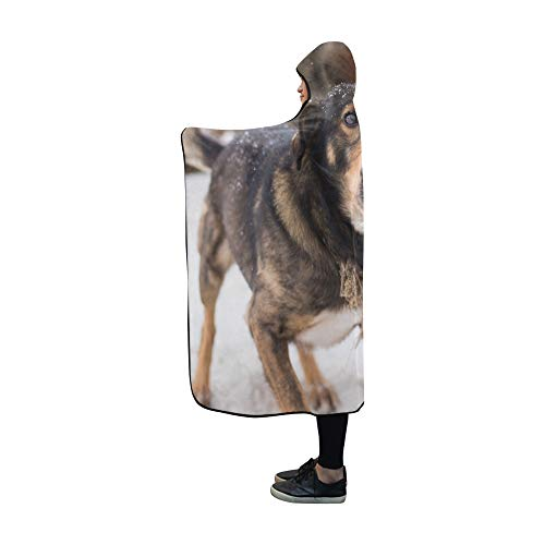 JOCHUAN Mit Kapuze Decke Bellen Wütend Wütend Hund Im Freien Sieht Decke 60 x 50 Zoll Comfotable Mit Kapuze werfen Wrap -