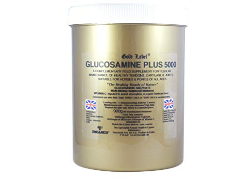 Gold Label - Glucosamin Plus 5000 - 900g