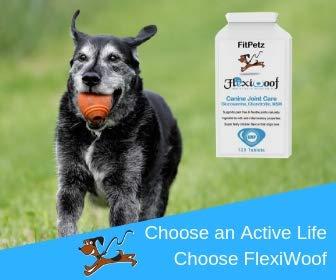 Hunde-Gelenk-Ergänzungen – FlexiWoof – Glucosamin, Chondroitin, MSM, Hyaluronsäure, Curcumin, Grünlippmuscheln – Arthritis-Tabletten für Hunde – 120 Chicken Flavoured Tablets – Geschmacksgarantie – UK