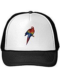 Funny Macaw Parrot Red Yellow Blue Green Bird Trucker Hat (Fun Parrot Hat)