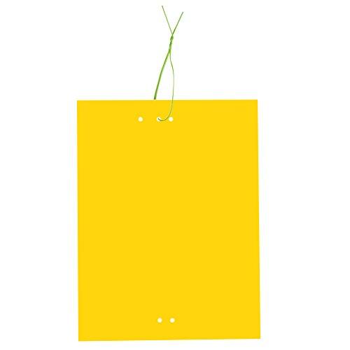 Huvai Lot de 30 pièges autocollants double-face jaunes pour insectes volants - 15,2 x 20,3 cm - attaches élastiques fournies