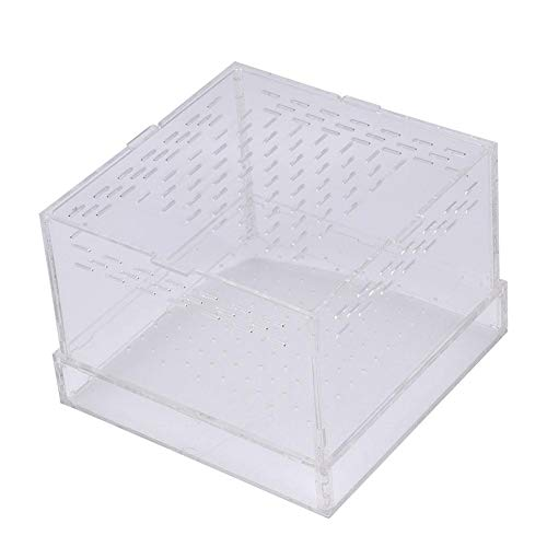 HEEPDD Wurmzucht Box Tragbare Acryl Reptilien Box Terrarium Lebensraum für Mehlwurm Vogelspinnen Geckos Grillen (Gecko Lebensraum)
