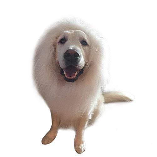 Workbees Hund Löwe Mähne Verstellbar Hunde Perücke Halloween Hundekostüm für Mittlere und Große Hunde (Weiß, Ohne ()