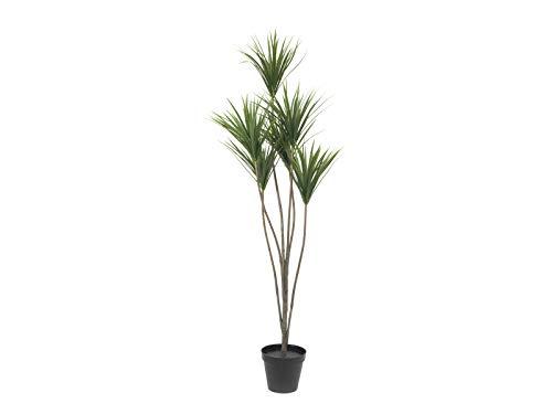 Kunstpflanze Hinweise</b>