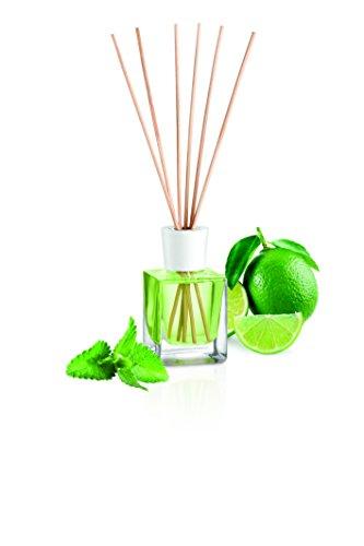 Tescoma fancy home diffusore di essenza, verde, 8.5x6.5x25.1 cm
