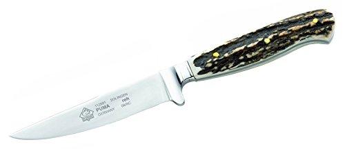 Puma Jagdmesser, Modell Kitz, Stahl 1.4034, Hirschhorn-Schalen, Leder-Steckscheide