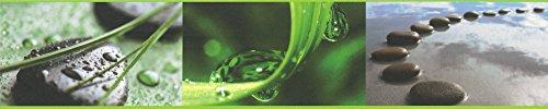 Preisvergleich Produktbild A.S. Création selbstklebende Bordüre Only Borders 9 Borte braun grün schwarz 905611
