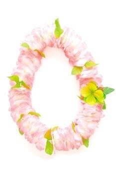 Hawaii-de-banda-Rose
